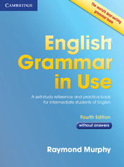 English Grammar in Use (without answers)