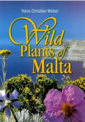 Wild Plants of Malta Paperback