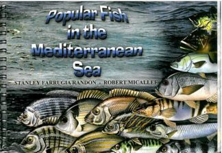 Popular Fish in the Mediterranean Sea
