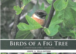 Birds of a Fig Tree
