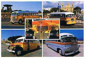 Maltese Buses (Pack of 50) #249