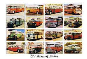 Old Buses of Malta (Pack of 50) #95