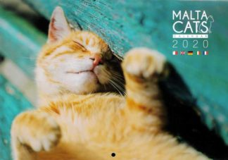 Malta Cat Calendar 2020 BDL Books