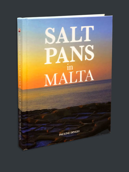 Salt-Pans-3d-BDL-Books